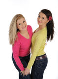 Twee mooie meisjesvrienden die pret en het lachen hebben Stock Foto's