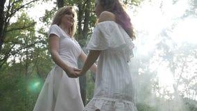 Twee mooie tieners dansen in een weide in een de zomerdag door rook in langzame motie - stock video