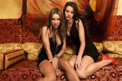 Twee mooie vrouwen stock afbeelding