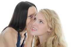 Twee mooie vrouwen die geheim vertellen Stock Foto's