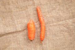 Twee niet genormaliseerde lelijke wortelen: dunne bochtig en klein in centrum van juteachtergrond stock afbeelding