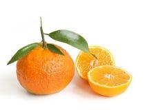 Twee oranje mandarins royalty-vrije stock foto's