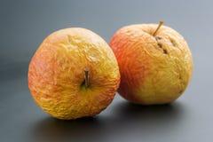 Twee oude appelen stock afbeeldingen