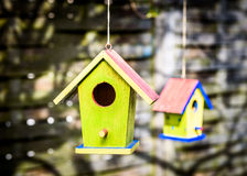 Twee oude doorstane DIY-vogelhuizen die van de boom hangen Royalty-vrije Stock Afbeeldingen