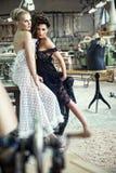 Twee overweldigende dames in romantisch stellen Royalty-vrije Stock Afbeeldingen