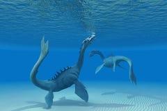 Twee Overzeese Draken Royalty-vrije Stock Foto's