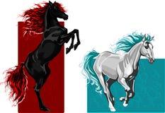 Twee paarden, brand en water Stock Foto