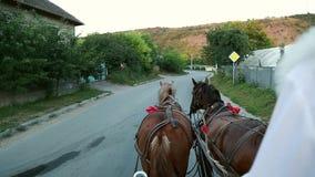 Twee paarden in een kar met de ogen van een bruidegom stock videobeelden