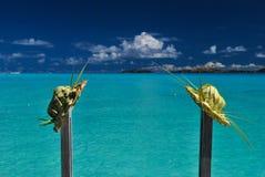 Twee palmbladhoeden Stock Afbeeldingen