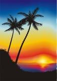 Twee palmen vector illustratie