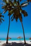 Twee palmen op oceanic whitesandstrand Stock Afbeeldingen
