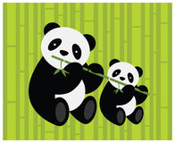 Twee panda's. Royalty-vrije Stock Fotografie
