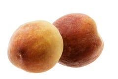 Twee perziken op wit Stock Afbeelding