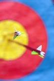 Twee pijlen in het doel Royalty-vrije Stock Afbeeldingen