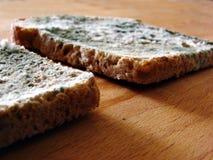 Twee plakken van beschimmeld brood Stock Foto's