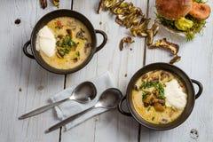 Twee platen van champignonsoep en verse ingrediënten stock fotografie