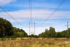 Twee polen met draad met hoog voltage in de weide in het bos stock foto