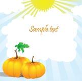 Twee pompoenen en bladeren in de zon Stock Afbeeldingen