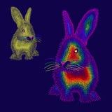 Twee regenboog gekleurd konijn Stock Foto