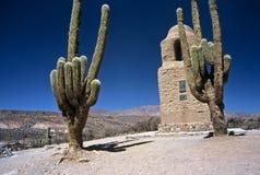 Twee Reusachtige Cactussen in Humahuaca, Salta, Argentinië Stock Foto