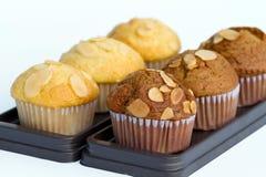 Twee rijen van koffie en vanille cupcakes Stock Fotografie