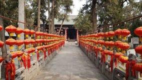 Twee rijen van steenleeuwen in Guanlin-Tempel zijn behandeld met rode lantaarns stock afbeelding
