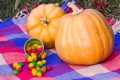 Twee rijp pompoenen en suikergoed van Halloween Royalty-vrije Stock Fotografie