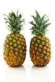 Twee rijpe ananassen royalty-vrije stock afbeelding