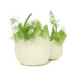 Twee rijpe (geïsoleerde) fennels Royalty-vrije Stock Fotografie