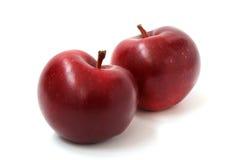 Twee rijpe rode appelen Stock Foto