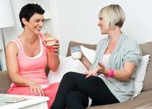 Twee rijpe vrouwenvrienden die over koffie chating Stock Foto