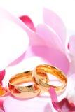 Twee ringen met orchis Royalty-vrije Stock Afbeeldingen
