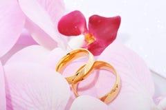 Twee ringen met orchis Stock Fotografie
