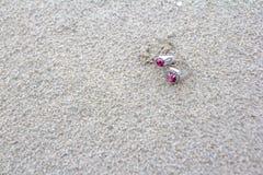 Twee Ringen op zand Stock Afbeelding