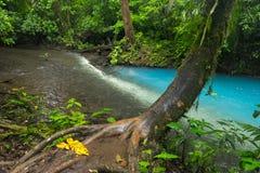 Twee rivieren in Costa Rica royalty-vrije stock afbeeldingen