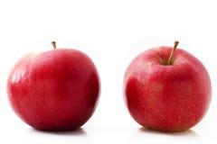 Twee rode appelen Stock Foto's