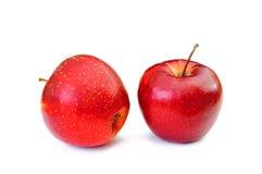 Twee rode appelen die op witte achtergrond worden geïsoleerdj Royalty-vrije Stock Afbeeldingen