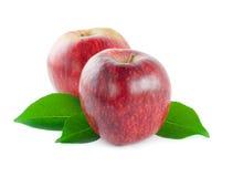 Twee rode appelen met bladeren Stock Afbeeldingen