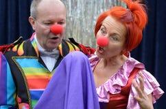 Twee rode besnuffelde uitvoerders letten op een het opheffen bal royalty-vrije stock foto's