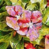 Twee rode bloemen Tekening imitatie Stock Fotografie