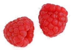 Twee rode frambozen Royalty-vrije Stock Afbeelding