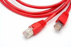 Twee rode geïsoleerde netwerkkabels Stock Foto