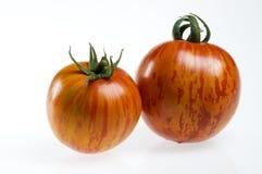 Twee rode gestreepte tomaten Stock Afbeelding