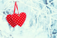 Twee rode harten op de winterboom royalty-vrije stock fotografie