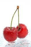 Twee rode kersen a over witte achtergrond Stock Foto's