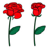 Twee rode rozen Royalty-vrije Stock Fotografie