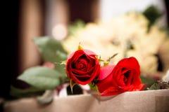 Twee rode rozen stock afbeelding