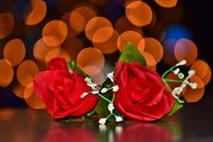 Twee rode rozen met bokehlichten stock afbeeldingen