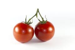 Twee rode tomaten op de wijnstok Stock Afbeeldingen