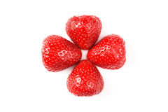 Twee rode verse gewassen aardbeien op witte achtergrond Sluit omhoog macrofoto Royalty-vrije Stock Afbeeldingen